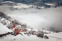 Campanella in the mist
