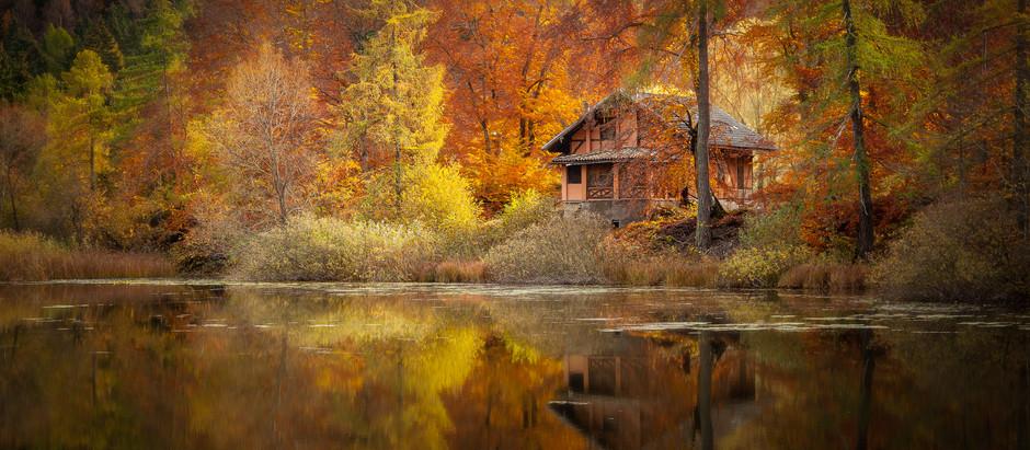 Autumn reflections  -  Riflessi d'autunno