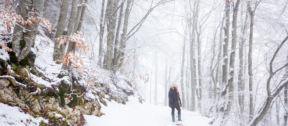 Reflecting Winter/Riflessioni Invernali