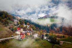 Campanella in the autumn