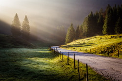Road to Sasso in the morning mist