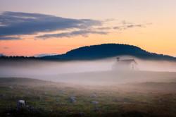 San Lorenzo autumn mist