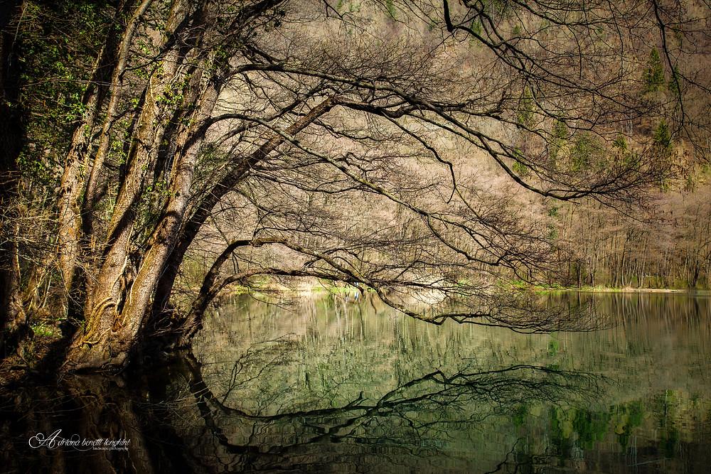 lake Levico shoreline