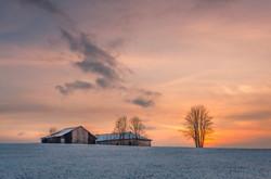 winter sunset case lise