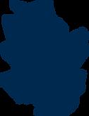 16-NOV-2020-ARENA-MORAZÁN (1).png