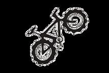a2ocyclescycles bike.png