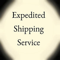 EXPEDITED FREIGHT1.jpg