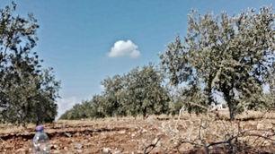 مزرعة للبيع في مادبا الفيصلية طريق جبل نيبو مقابل مسجد صلاح الدين