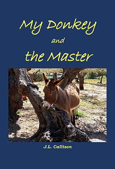 My Donkey and the Master cover design-pa