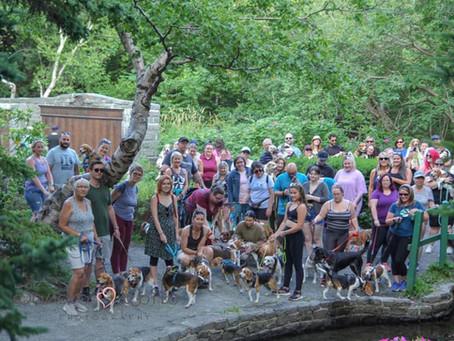 Beagle Meetup (August 2021)