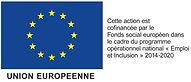 logo-FSE-UE.jpg