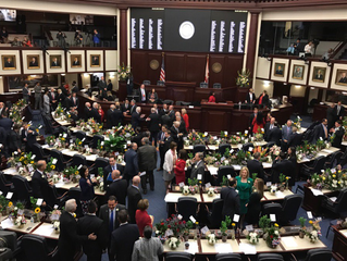 2017 Legislative Update: Week 4