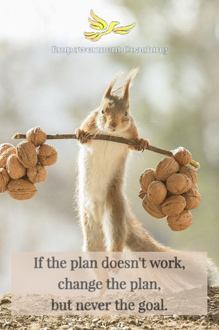 Empowerment coaching pill-If th eplan doesn't work