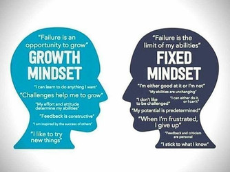 The Growth and The Fixed Mindset: practical implications for EFL