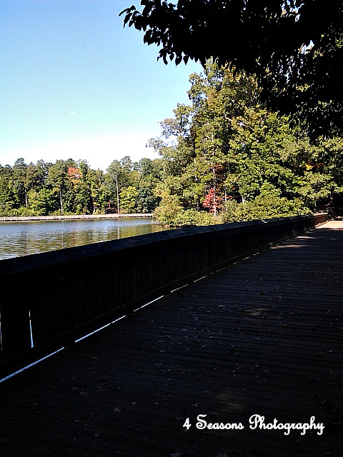 Bridge Over the Lake