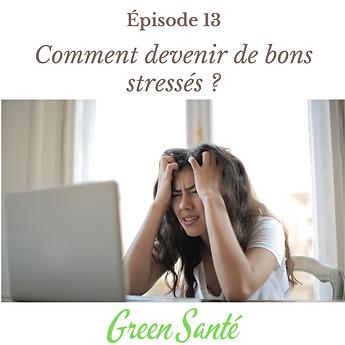 Épisode 13 Comment devenir de bons stressés.png