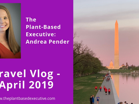 Travel Vlog - April 2019