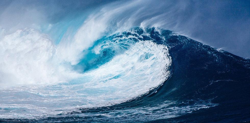 Logo de la vague de Blue up formation