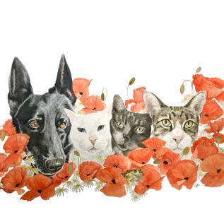 Keira, Lily, Jamy and Hugo