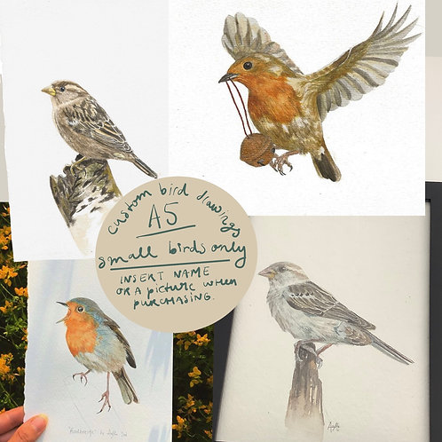 Custom small bird painting