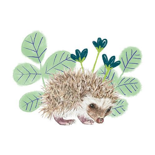 sticker 'little hedgehog'