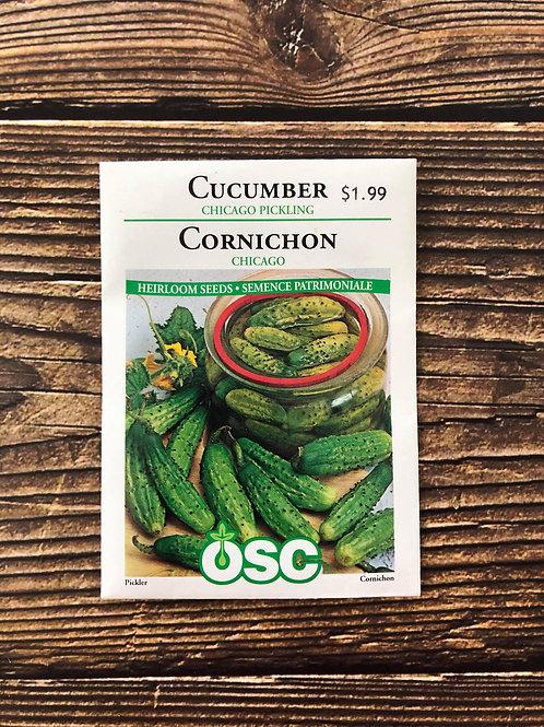 Cucumber Chicago Pickling