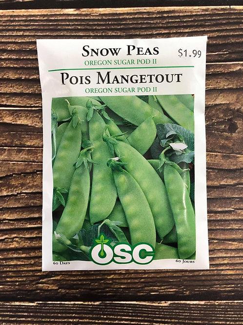 Pea Oregon Sugar Pod