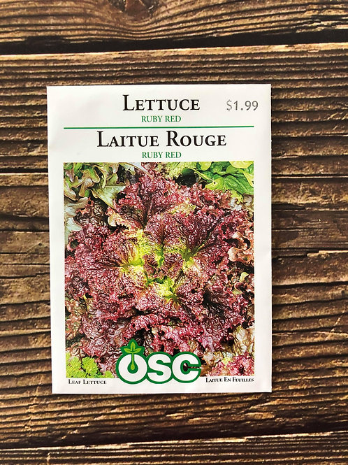 Lettuce Ruby Red