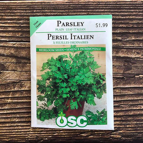 Parsley Plain Leaf Italian