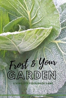 Frost and Your Vegetable Garden?