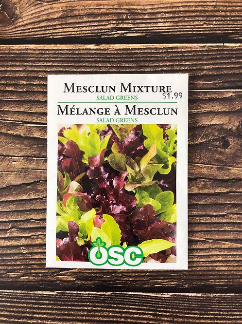 Mesclun Mixture Salad Greens