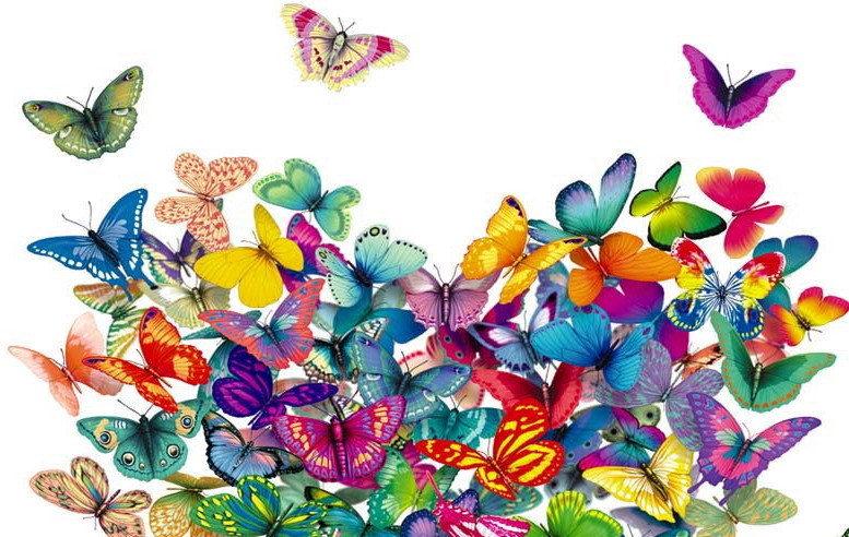 Les p'tits papillons inc.