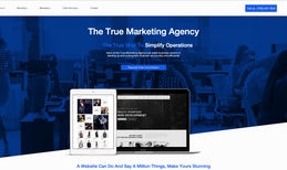 The True Marketing Agency (Our Site)