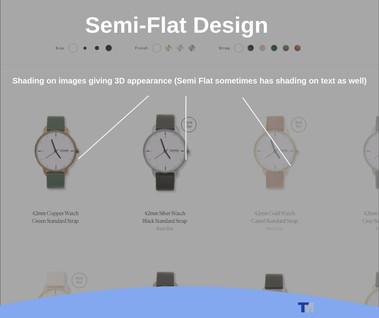 Example of Semi-Flat Website Design