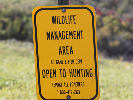 Our Outdoors: Vote Like Your Hunting & Fishing Depends on It