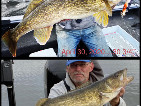 Seeing Double: A Catch and Release Story
