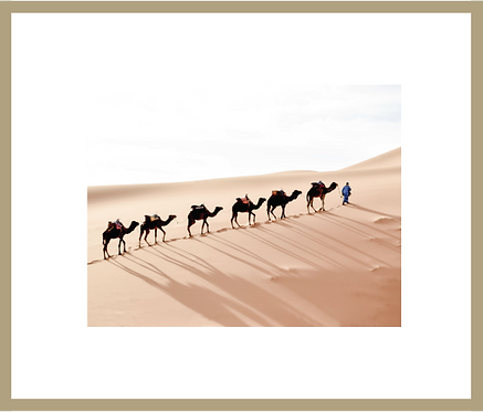 Sahara Dunes