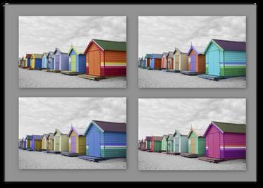 Brighton Coloring