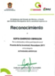 Premio Juventud.jpg