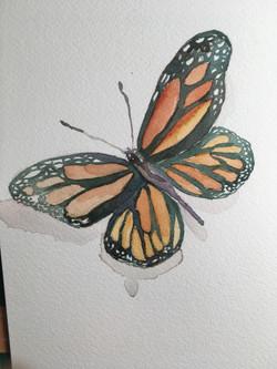 Alicia Sala - Title: Butterfly