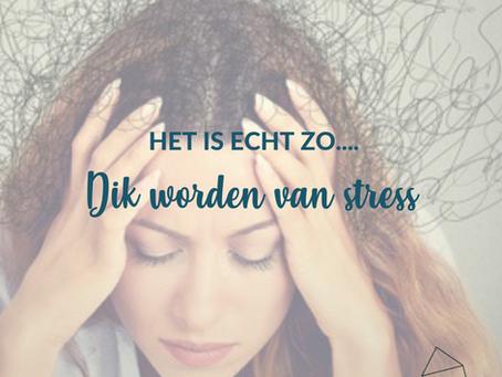 Waarom word ik dik van stress?