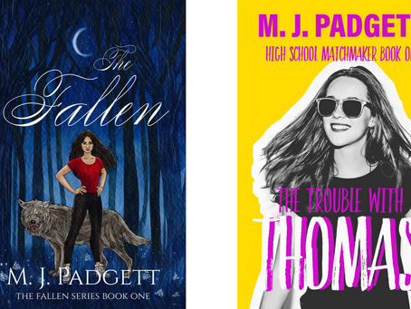 A Day in the Life: An Indie Author Update