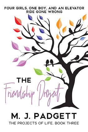 The Friendship Project.jpg