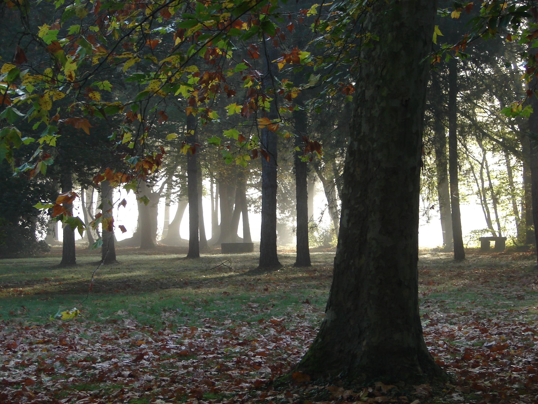 parc de la Berthoderie en automne