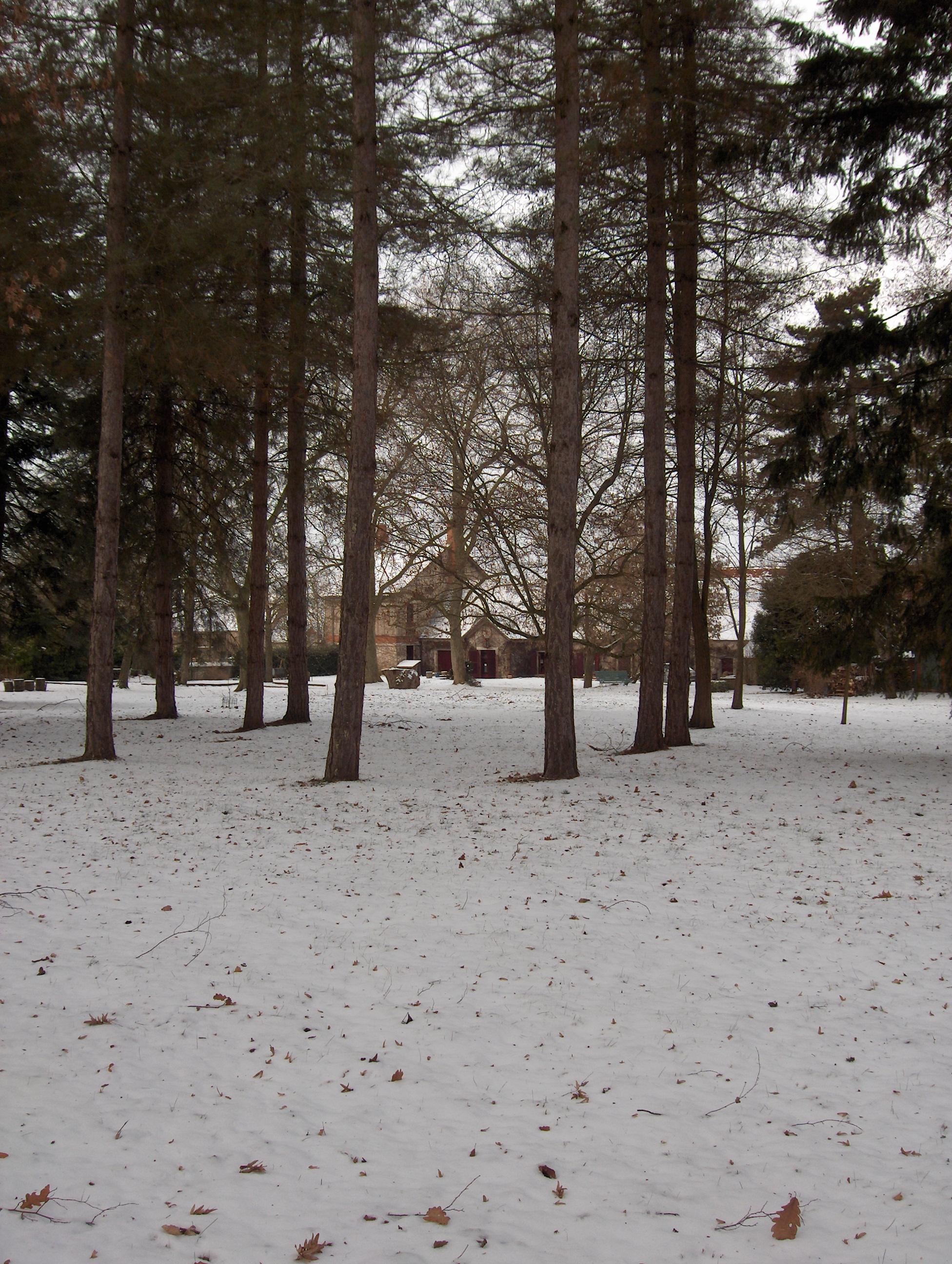 janvier 2010 028