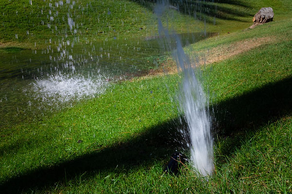 Broken sprinkler in the lawn, water clog
