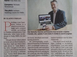 Website Workshops in The Sunday Business Post