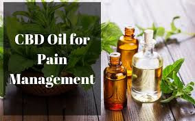 Top 3 CBD oils  for Pain
