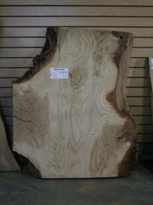 White Oak [A92037]