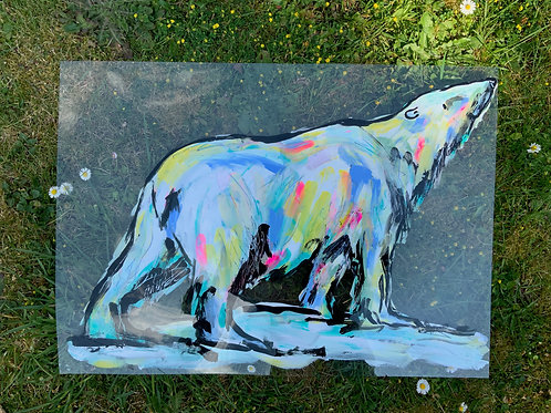 Polar Bear on Acetate